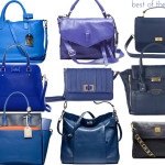 SMC blue bags 150x150 random friday finds:  flip & tumble