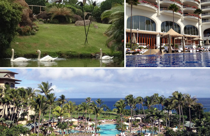SMC where to stay in maui travel in style: maui